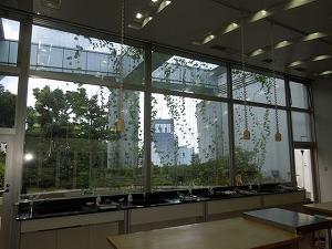 埼玉県草加市で遮熱窓フィルム施工